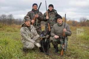 Владельцы охотничьих собак в Татарстане намерены выйти на митинг