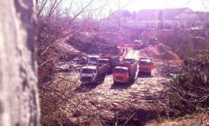 В Татарстане за ущерб природе казанец осужден на год исправительных работ