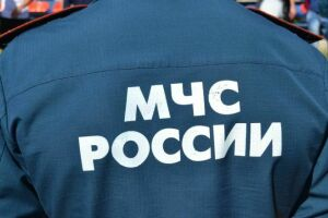 В Татарстане спасатели вырезали из забора щенка