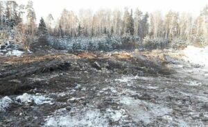 Несанкционированная свалка в Кукморском районе РТ ликвидирована