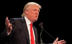 Трамп заявил, что Шварценеггер плохо справился с работой губернатора Калифорнии