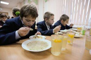 В Татарстане проверили 655 школ на организацию и качество питания