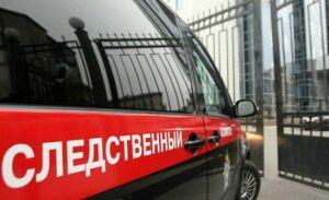 Следком Татарстана проводит проверку по факту обнаружения изъеденного собаками тела мужчины