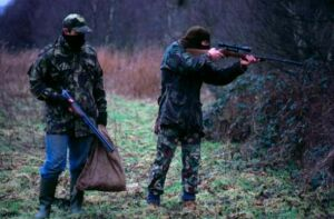 Минприроды предлагает создать анонимную горячую линию по случаям браконьерства