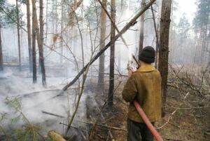 В лесах Татарстана начинается пожароопасный сезон