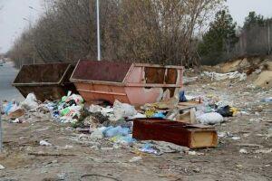 В Советском районе экологи обнаружили свалки мусора