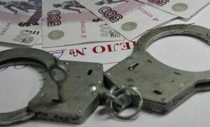 На челнинца возбуждено уголовное дело за неуплату кредита