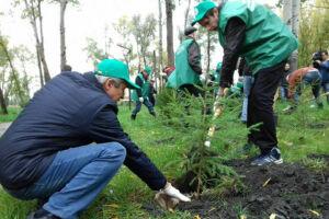 В казанском парке имени Урицкого появятся новые деревья