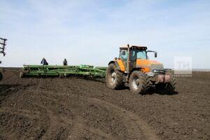 В Татарстане план по севу яровых культур выполнен на 99 процентов
