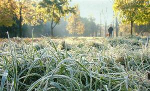 Из-за грядущих заморозков в Татарстане объявлено штормовое предупреждение