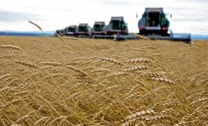 В Пестречинском районе готовятся к уборке урожая