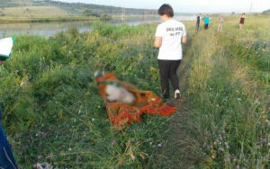 Фото: В Бугульминском районе в озере утонул 62-летний мужчина