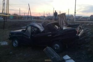 В Сарманово из-за кота на дороге водитель «Жигулей» разбил свое авто