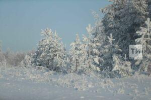 Антициклон принесет в Татарстан ощутимое похолодание