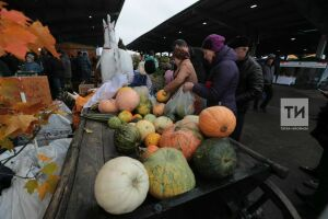 На ярмарки в Казани сельчане завезли продукции на 45,5 млн рублей