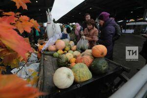 В городах Татарстана 8 декабря пройдут сельхозярмарки