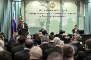 Продуктивность охотничьих угодий Татарстана впрошлом году составила 785,4 млн рублей