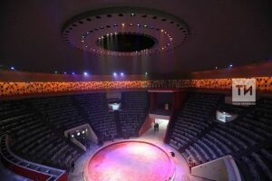 Ильсур Метшин: Казанский цирк откроется после реконструкции в марте