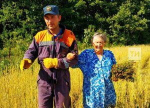 В Тукаевском районе РТ спасатели пришли на помощь заблудившейся пенсионерке