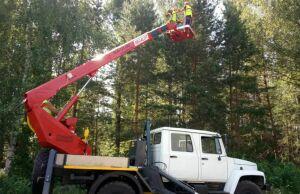 В лесах Татарстана сбор семян произведут при помощи новых автогидроподъемников