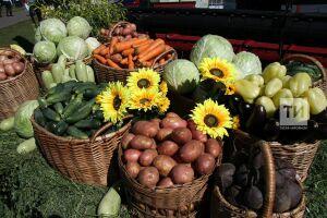 В Татарстане за полгода произведено сельхозпродукции на сумму более 82 млрд рублей