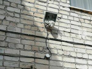 В Лениногорске сотрудники МЧС спасли еще один детсад от агрессивных ос