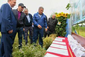 Минниханов оценил ход уборочной кампании вМамадышском районе
