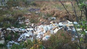 По требованию экологов ликвидированы свалки в Пестречинском и Лаишевском районах РТ