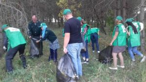 Учащиеся черемшанского лицея очистили лесные участки от мусора