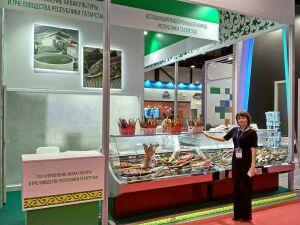 Татарстан представит рыбопромышленную отрасль республики на форуме в Санкт-Петербурге