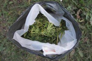 Нурлатские полицейские изъяли у местных жителей три килограмма марихуаны