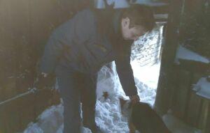 В Тетюшах спасатели достали пса, провалившегося в погреб заброшенного сарая