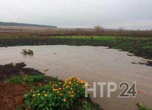 В Нижнекамском районе разлилась река из жидкого навоза