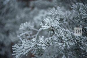 Аномально холодная погода сохранится в Татарстане до конца недели