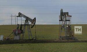 Татарстан готов нарастить поставки нефти в Беларусь