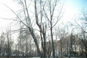 Профессор КФУ считает, что насегодняшний день оснеге вКазани неможет быть иречи