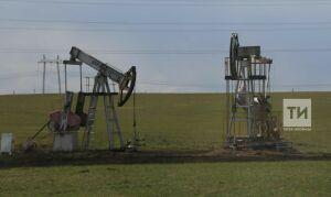 Самыми привлекательными отраслями для инвестиций вРТ признали нефть исвязь