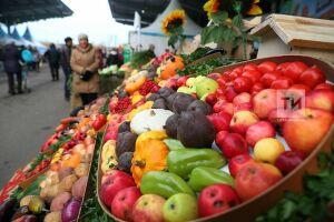 В Татарстане на сельхозярмарки завезли продукции почти на миллиард рублей