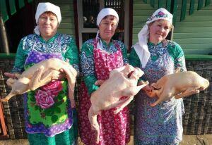 В деревне Верхнеуслонского района отпраздновали «Каз омэсе – Праздник гусиного пера»