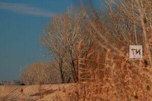 Метеоролог спрогнозировал, что с вероятностью 87% ноябрь в Казани будет теплее нормы