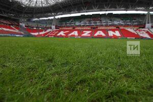 На восстановление поля «Казань Арены» потратят около 96 млн рублей
