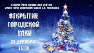 Главную городскую елку в Лаишеве откроют 23 декабря