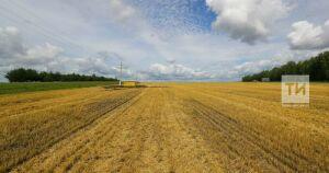 Путин: Агроэкспорт к 2024 году планируется увеличить до 45 млрд долларов