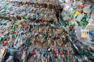 Николай Атласов: Нужно развивать переработку твердых коммунальных отходов