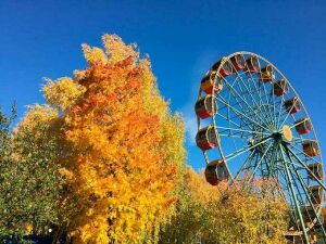 В нижнекамский парк «Семья» привезут новое колесо обозрения