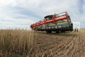 В Татарстане за три месяца производство сельхозпродукции выросло на 2% – до 42 млрд рублей