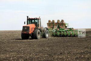 В Татарстане 17 районов выполнили прогнозные показатели по севу яровой пшеницы