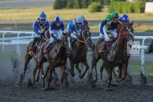 Скачки татарских лошадей пройдут вДень республики наКазанском ипподроме