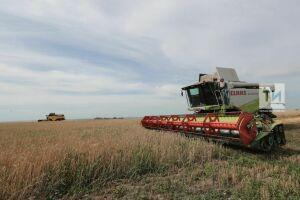 Глава Минсельхозпрода РТ призвал сельчан работать круглые сутки ради заготовки кормов