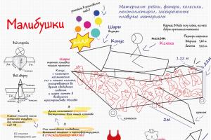 Три команды представят Татарстан на фестивале самодельных летательных аппаратов Red Bull Flugtag